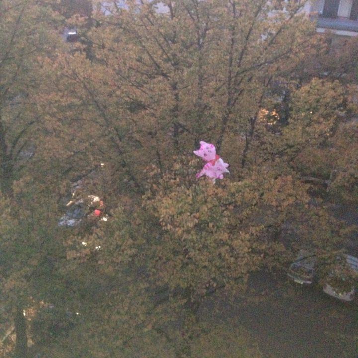 Die Moritat vom pinken Katzenballon